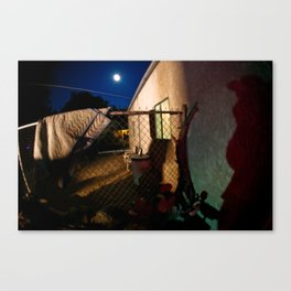 Full moon and lurking shadows Canvas Print
