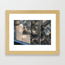 Laced with Sunshine Framed Art Print