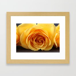 By Any Other Name... Framed Art Print