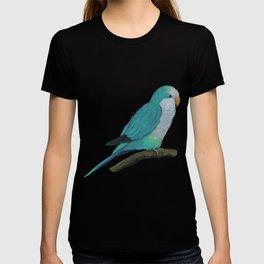 Cuddly blue quaker parrot T-shirt