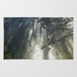 Smoke and Sun Filtered Through a Fir Tree Rug