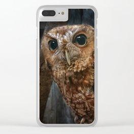 Screech Owl Portrait Clear iPhone Case