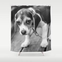 Puppy! Shower Curtain