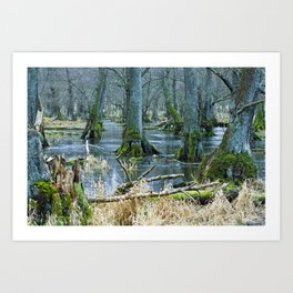 Trees in Frosen Water Art Print