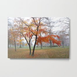 Foggy Fall Metal Print