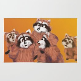 Raccoon Series: Discussion Rug