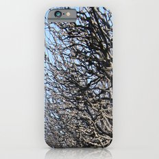 Barcelona park Slim Case iPhone 6s