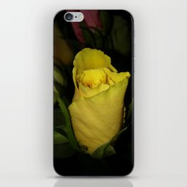 A Friendly Yellow Rose iPhone Skin