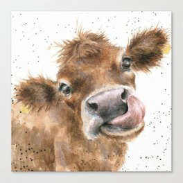 Face baby cattle Canvas Print