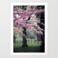 Blossoms for the Road ahead Art Print