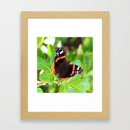 Society6 butterfly Framed Art Print