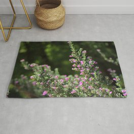 Angled Texas Ranger Branches on Deep Forest Green Rug