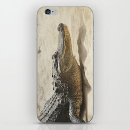 Alligator Photography | Reptile | Wildlife Art iPhone Skin