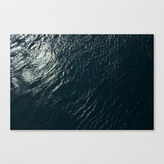 WATERS Canvas Print