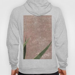 Cactus on Weathered pink wall Hoody