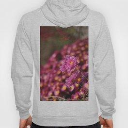 Colorful Pink Flowers Hoody