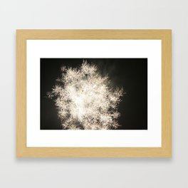4th of July, '08, #2, FireWork by Jonesy Framed Art Print