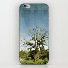 leafy lanterns iPhone & iPod Skin