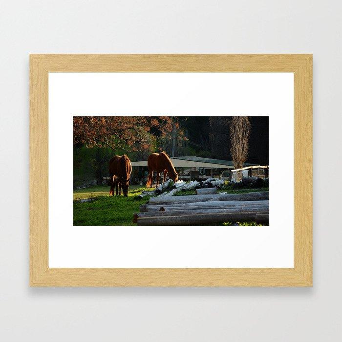 Golden Brushed Horses Framed Art Print