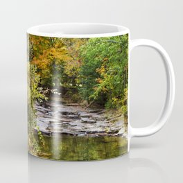 Fall Creek Landscape Coffee Mug