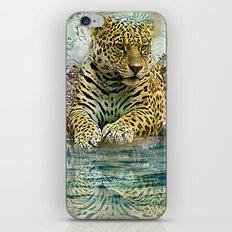 Lingering Leopard iPhone & iPod Skin