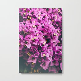 Sea of pink Metal Print