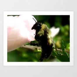 The Bumblebee Waltz Art Print