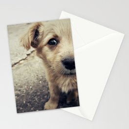 homeless Stationery Cards