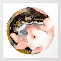Chinese zodiac : Incompatible V Art Print