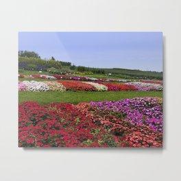 Floral patchwork under a blue sky Metal Print