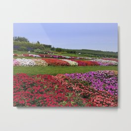 Floral patchwork under a blue sky Metal Print