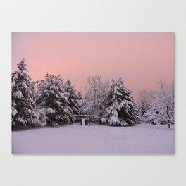 Pink Winter Sky (with swingset) Canvas Print