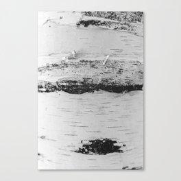 Black + White Birch Canvas Print