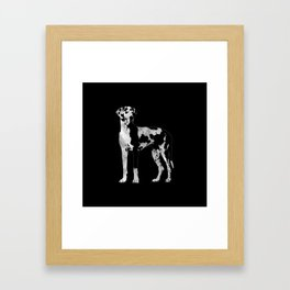 Harlequin Great Dane  -pearl and silver Framed Art Print