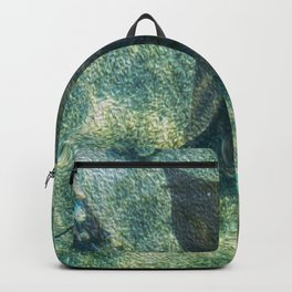 The Stingray Backpack