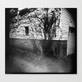 Alley Vines Climbing Canvas Print