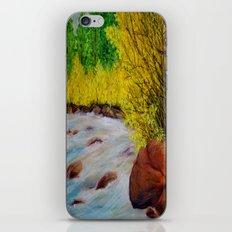 Rushing River iPhone & iPod Skin