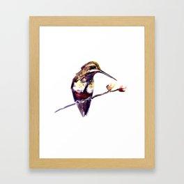 Elegant Bird, Hummingbird Framed Art Print