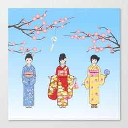 Kimono Basics Canvas Print