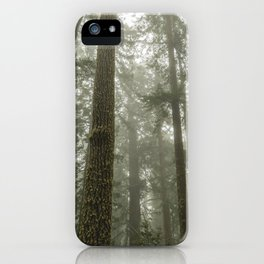 Memories of the Future - nature photography iPhone Case