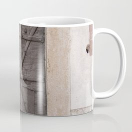 iron door Coffee Mug