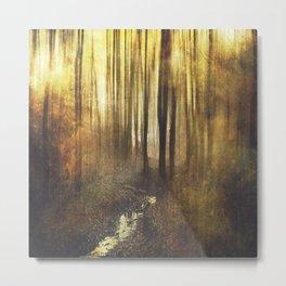 Vintage Woods Metal Print