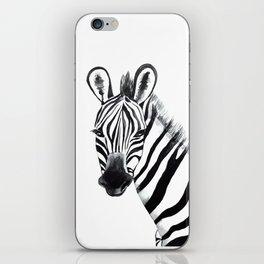Zebra, animal iPhone Skin