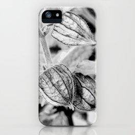 Physalis angulata iPhone Case
