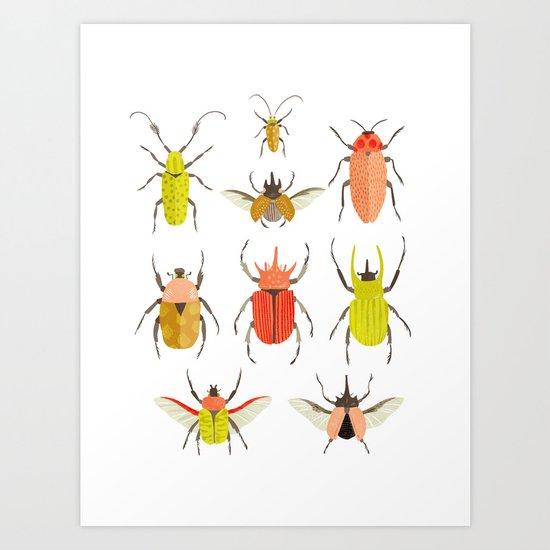Beetle Identification Chart Art Print