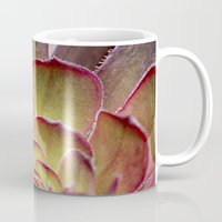 succulent Mugs featuring Succulent by Shy Photog