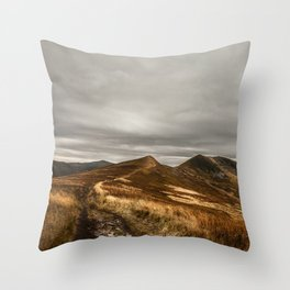 Quietudene Throw Pillow