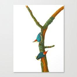 Turquoise Bird Canvas Print