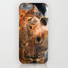 Lazy Bear iPhone 6s Slim Case