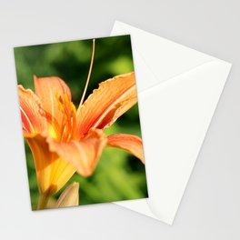 Sunny Lily Stationery Cards